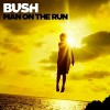 Bush - Loneliness Is A Killer Lyrics