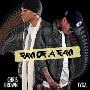 Chris Brown - Fan Of A Fan