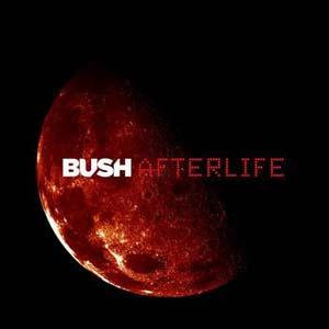 Bush - ing