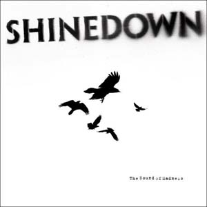 Shinedown - Second Chance Lyrics