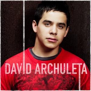 David Archuleta- Works For Me Lyrics
