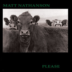 Matt Nathanson - Please