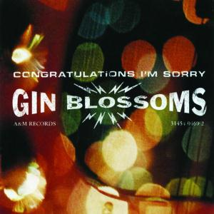 Gin Blossoms - Competition Smile Lyrics