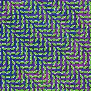 Animal Collective - Summertime Clothes Lyrics