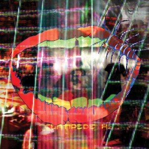Animal Collective:Bluish Lyrics | LyricWiki | FANDOM ...