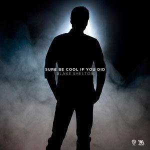 Blake Shelton - Sure Be Cool If You Did Lyrics