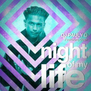DJ Pauly D - Night Of My Life Lyrics (feat. Dash)