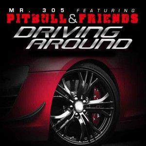 Pitbull - Driving Around Lyrics (Feat. David Rush)
