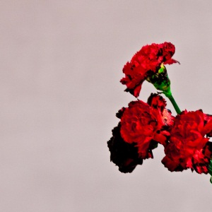 John Legend - For The First Time Lyrics